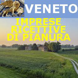 VENETO: contributi a fondo perduto del 30% alle imprese turistiche ricettive di pianura. Scadenza 7 Maggio 2019